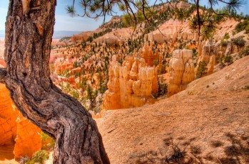 Fairyland Canyon - Bryce Canyon National Park - Utah