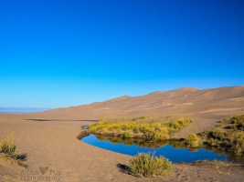 Morning Reflection - Great Sand Dunes National Park - Colorado