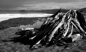 Driftwood Shelter - Montana de Oro