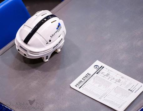 Building - Penn State Women's Ice Hockey