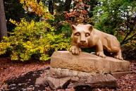 Autumn with The Lion - Penn State University - University Park, PA