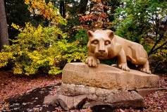 Autumn with The Lion - Penn State University - University Park, PA