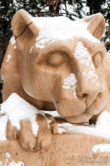 Watching Winter - Penn State University