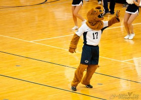 Penn State vs. Indiana University - Women's Volleyball - The Nittany Lion
