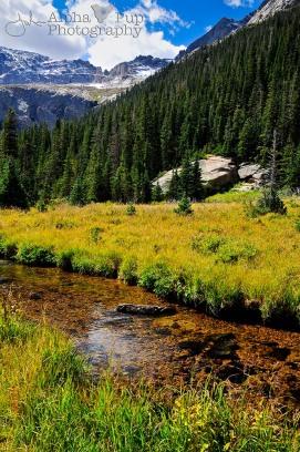 Marsh Trail - Rocky Mountain National Park