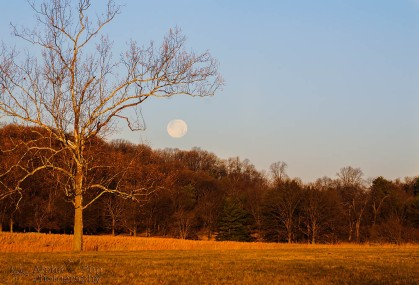 Winter Moon - Valley Forge National Historic Park - Pennsylvania