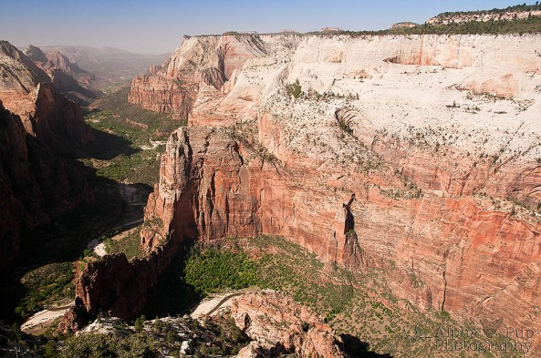 View from Observation Point - Zion National Park - Utah