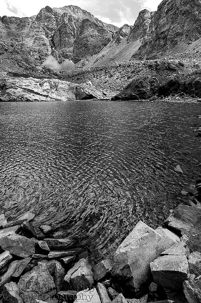 South Zapata Lake Black & White