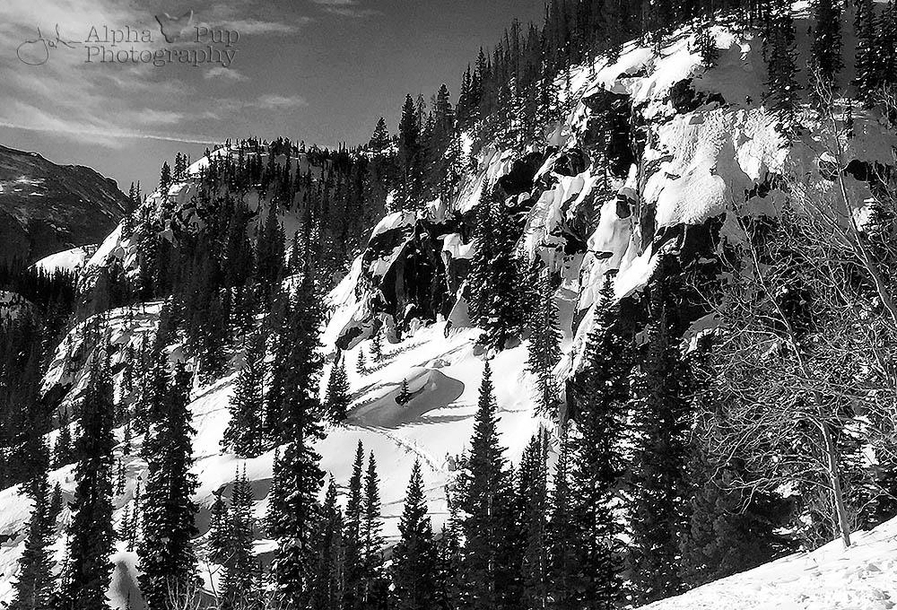 Winter Mountainside