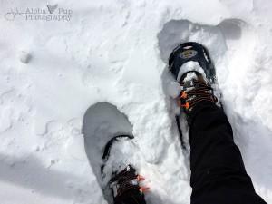 Big Winter Feet