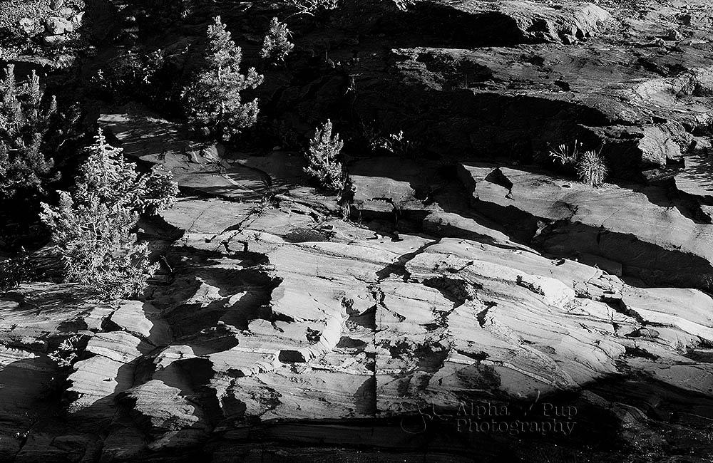 Shadows & Rocks
