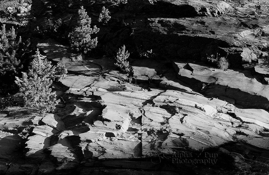 Shadows & Rocks