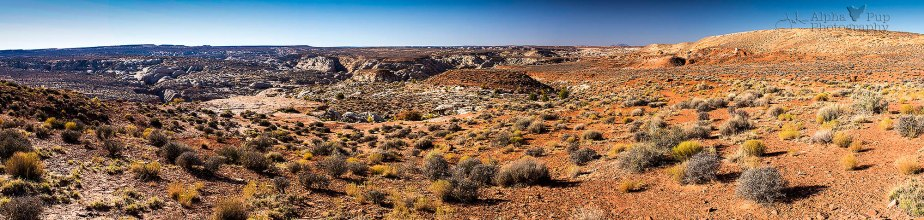 Horseshoe Canyon Panorama