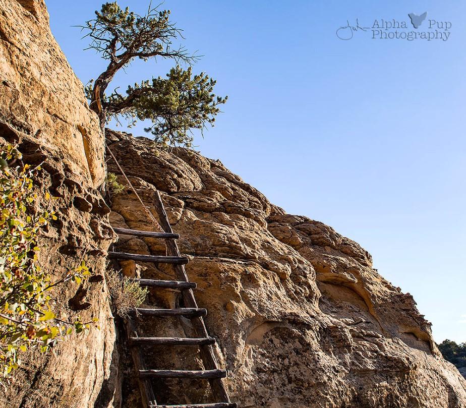 Climb Down